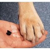 Антицарапки для собак