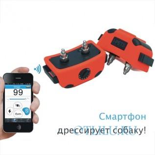 PetTrainer PET918 дрессировочный ошейник для iPhone